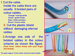 make a LAN cable/ network cable/ network UTP cable image 4