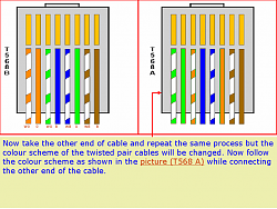 make a LAN cable/ network cable/ network UTP cable image 6