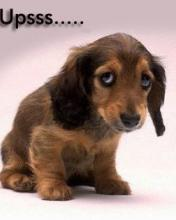 Click image for larger version.  Name:Animal-24-.jpg Views:4 Size:6.2 KB ID:20839