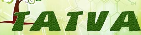 Tatva 2013, Delhi Technological University, Delhi, Delhi, Technical Fest