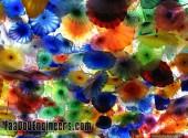 colourful-ones-of-kurushetra-anna-university-photo-gallery-010