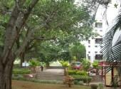 national-institute-of-engineering-mysore-campus-photos-photos-005