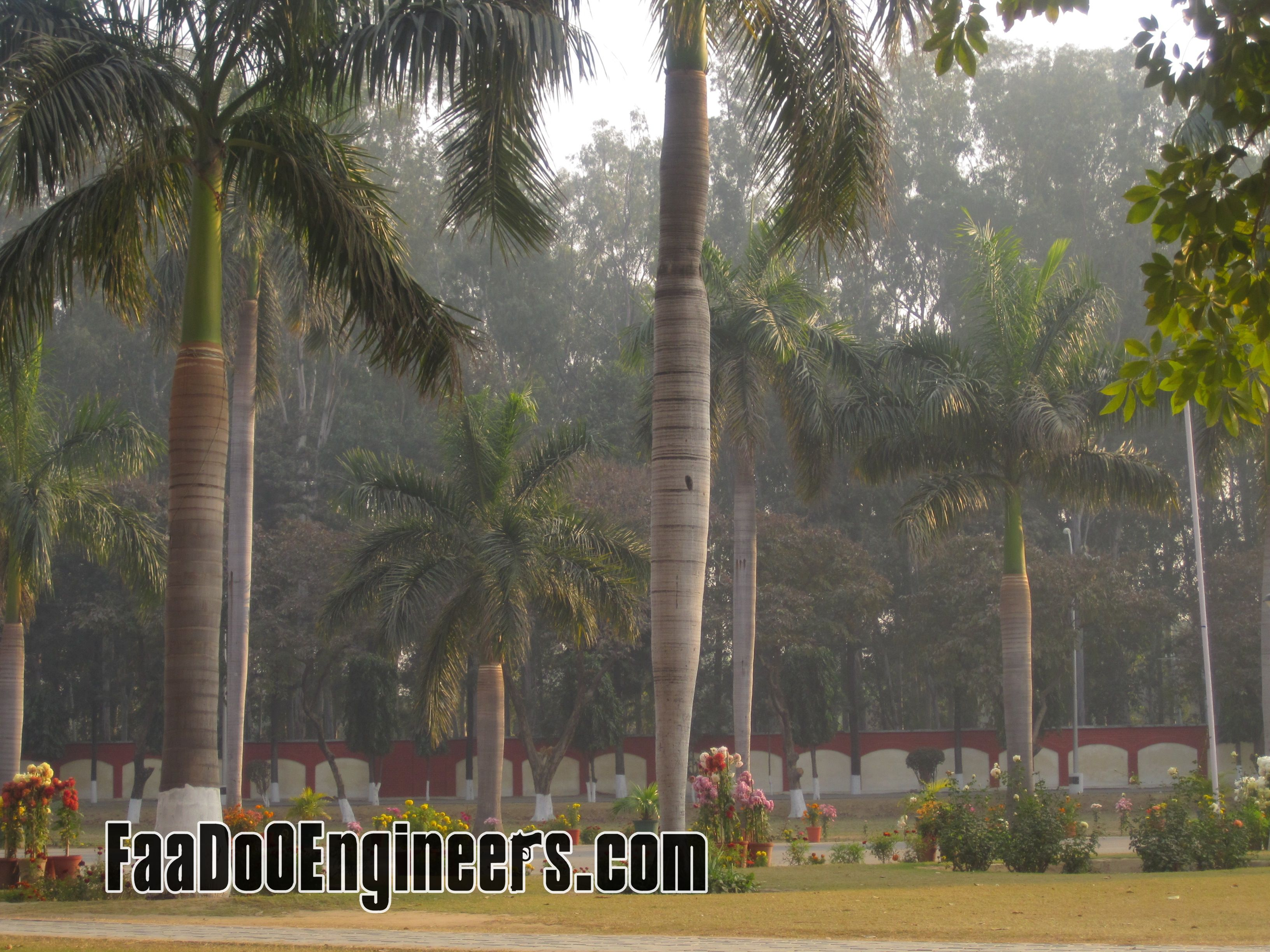 thapar-university-photos-002