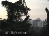 thapar-university-photos-014